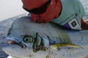 Pesca alla lampuga Big Game Maio
