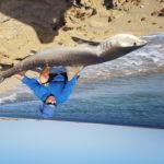 Pesca degli squali a Maio