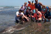 foto di gruppo pesca Big Game Maio